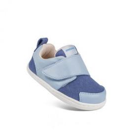 Little Blue Lamb Baylor blue